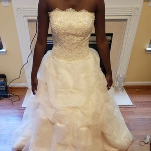 Wedding/Quinceanera Dress